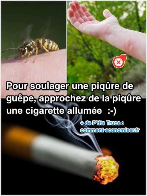 Comment Eloigner Les Guepes : comment, eloigner, guepes, Comment, Soulager, Rapidement, Piqûre, Guêpe, Cigarette.