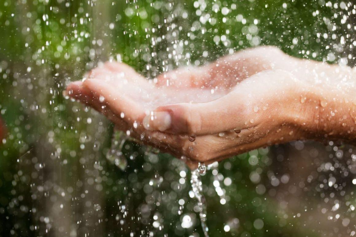 Conservación del ciclo del agua fundamental para un acceso en el futuro: Rotoplas 1