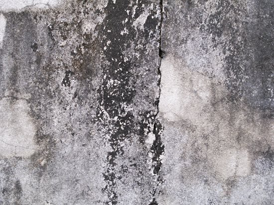 how to remove mold from concrete