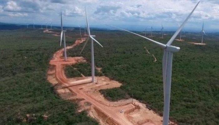 """Modelo. """"A exploração dos ventos vem se somar aos impactos já causados pela criação de pastos, pelos latifúndios, pela forma extrativista praticada pela população local, pelos impactos da irrigação inadequada"""", denuncia professor pernambucano"""