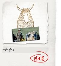 Yak: 143€