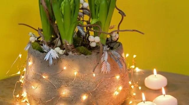 Fleur Nouvel An Composition De Jacinthes Faire Soi
