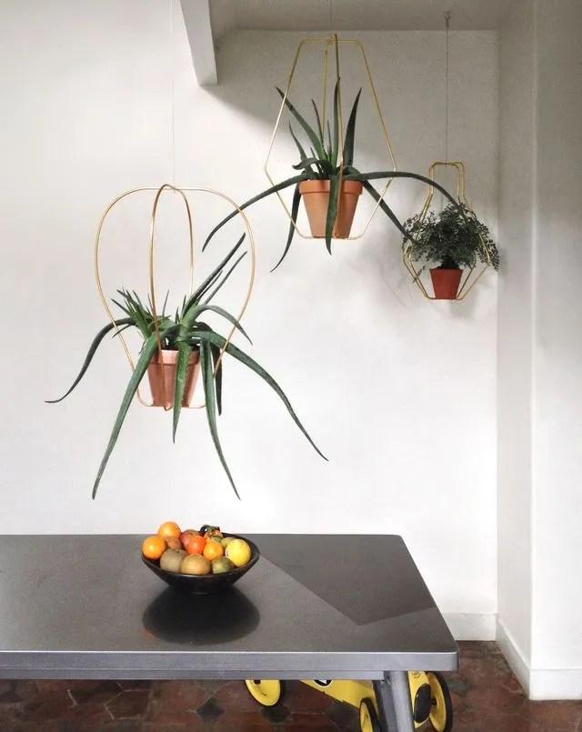 Plante Dintrieur 15 Ides Originales Pour Mettre Du
