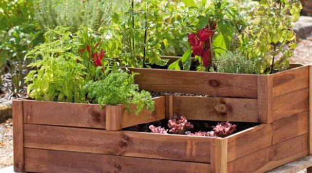 Potager  plantes fruitiers aromates pour balcon et terrasse  Ct Maison