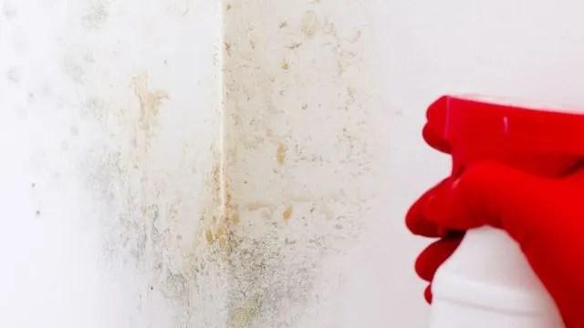 Comment nettoyer une tache sur un mur blanc nettoyer un mur trs sale  Ct Maison