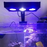 라미컴 해외배송 30W LED 전체 스펙트럼 해양 암초 탱크 산호초 물고기 탱크에 대 한 터치 컨트롤과 실내 수족관 빛 바닷물 조명, 미국 플러그, 협력사 (TOP 5611124843)