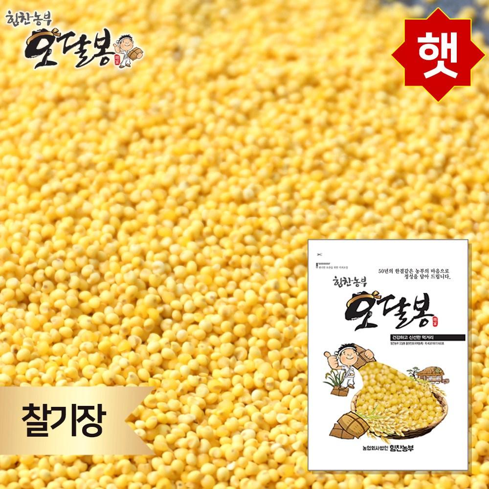 힘찬농부오달봉 찰기장 기장쌀 수입산 중국산, 1개, 5kg
