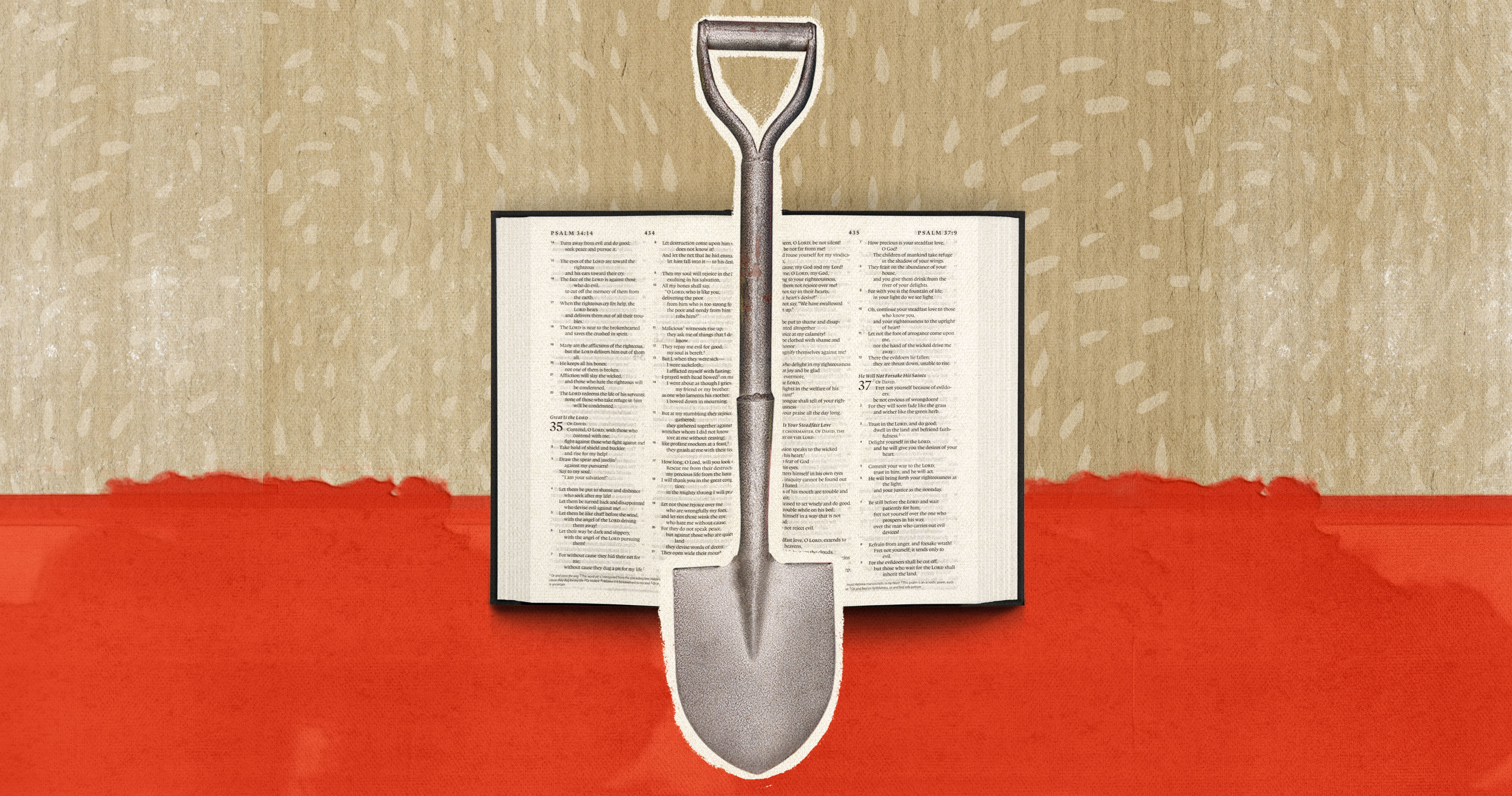5 Suggestions for Serving to Your Teenagers Examine the Bible