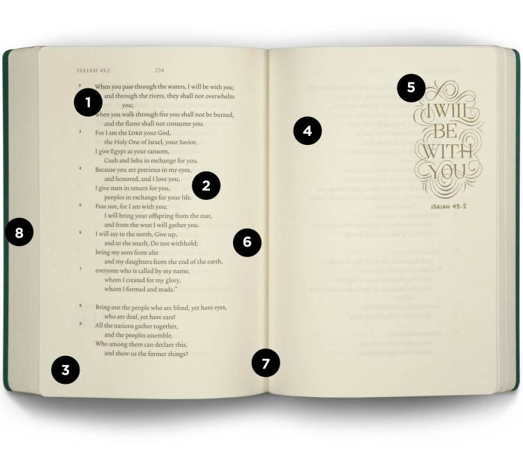 Introducing the ESV Illuminated Scripture Journal: Outdated Testomony Set
