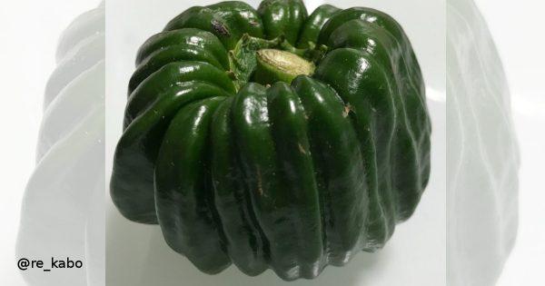 ヘンテコ野菜