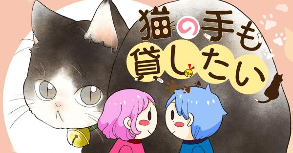 nekonotemokaritai_eye