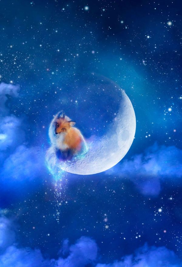 Vape Wallpaper Girl Moon Fox By Aimee Stewart Decalgirl