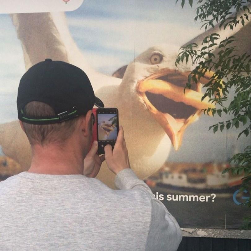 google buys seagull photo hannah huxford 5 - Já pensou ter uma foto sua comprada pelo Google? Ela conseguiu!