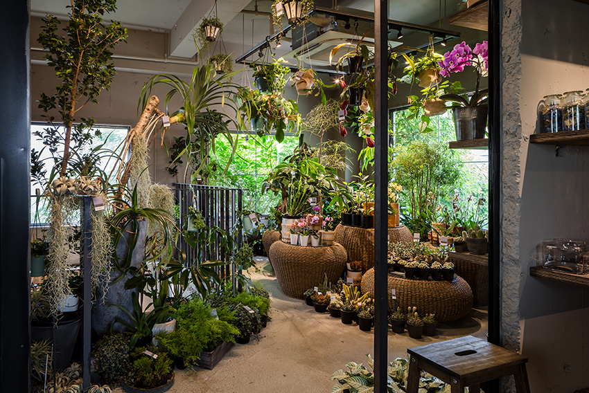 KIAS transforms residence into an exotic flower shop in tokyo