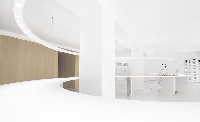 panda design builds a new office around a curved workspace in xiamen, china designboom