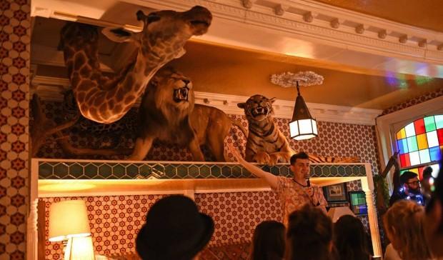 Comedy Cirque Wildlife  London Comedy Reviews  DesignMyNight