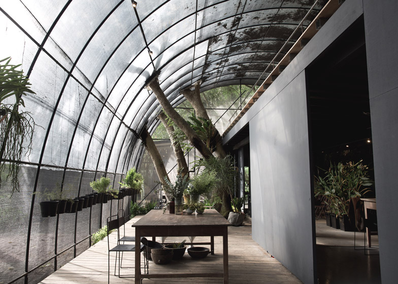 Woodland Greenhouse Offers Shelter To Flora And Fauna