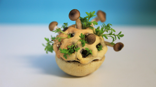 Edible Growth 3D-printed food by Chloé Rutzerveld