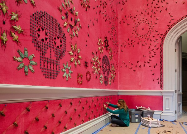 Bug-covered Wall Installation