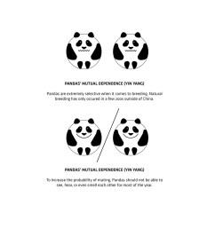 panda house by bjarke ingels group  [ 2364 x 1330 Pixel ]
