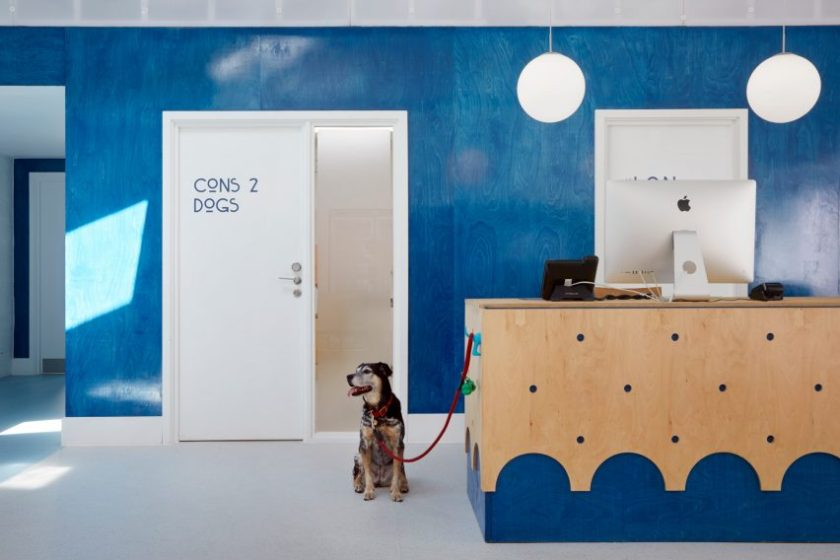 London Animal Hospital by Alma-nac