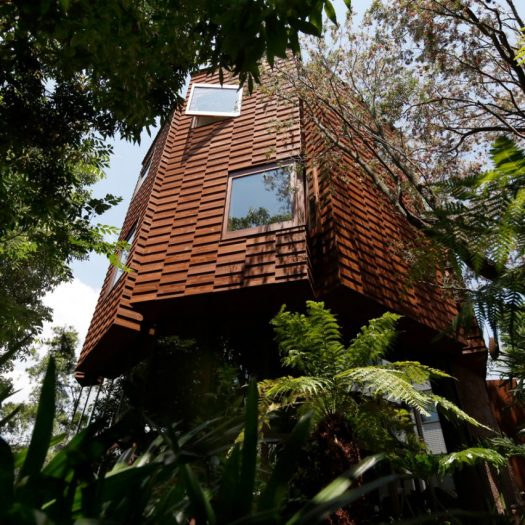 Todoroki House by Atelier Tsuyoshi Tane Architects