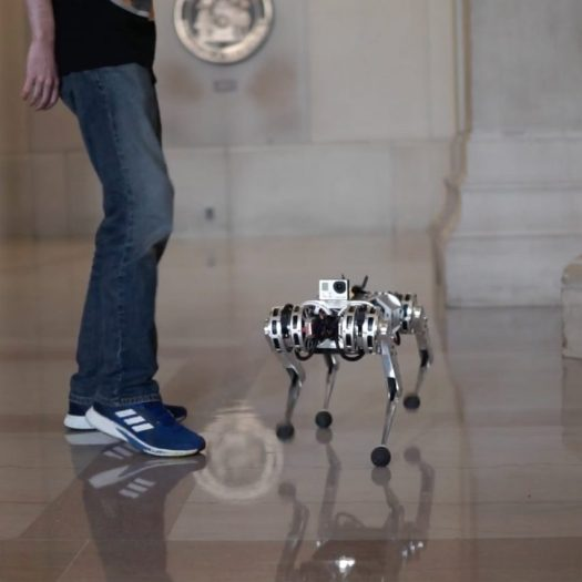 MIT Mini Cheetah robot backflip