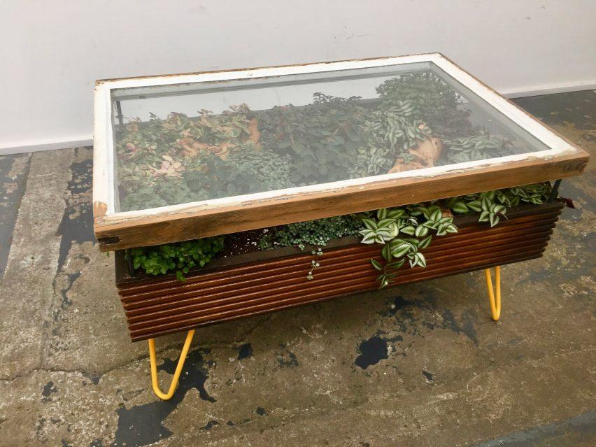 hackney botanical makes plant filled