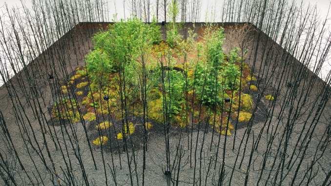400 fire-blackened pine trees at Vienna Biennale