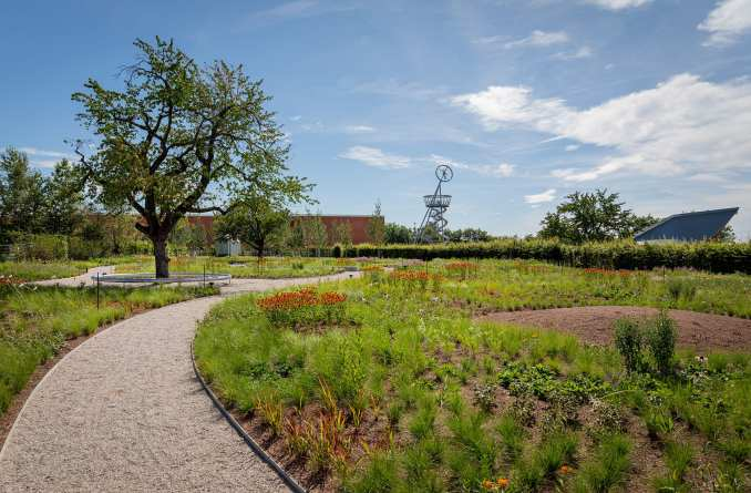 Gravel pathways intersect the gardens