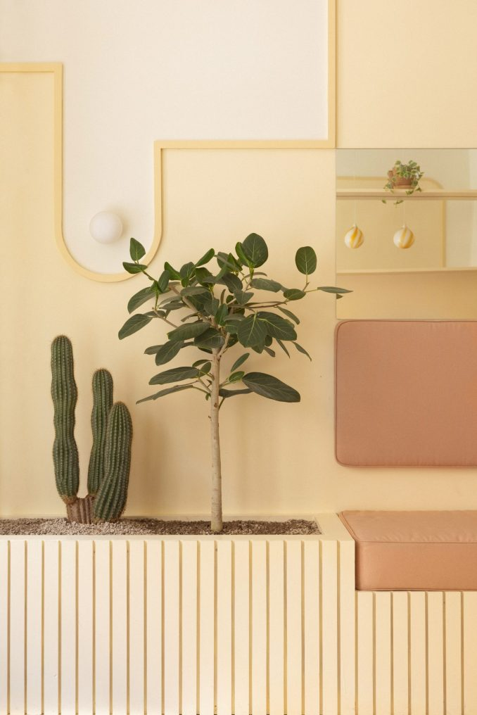 Corner with plant in pastel cafe