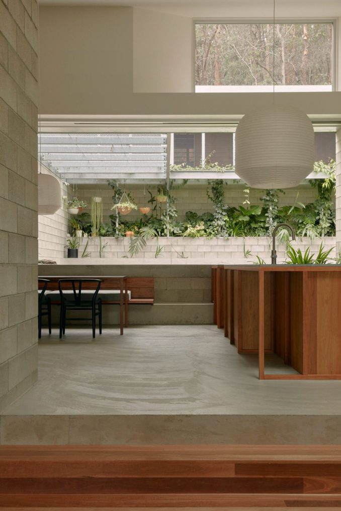 Wooden kitchen by Nielsen Jenkins looking out at courtyard filled with greenery