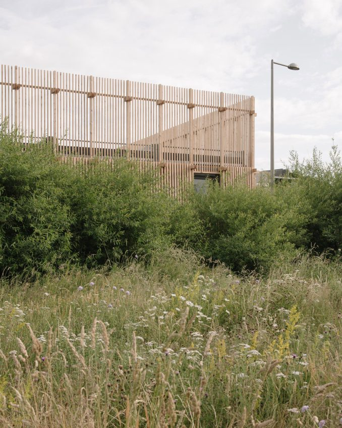 Plants in front of Construction Skills School by EBBA Architects