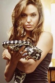 Angelina Jolie, una serpiente en la familia