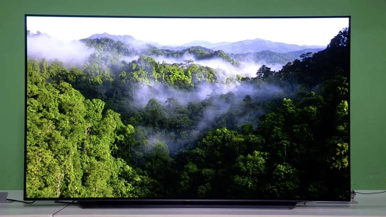 Lg Oled 77 Inch Wallpaper Tv Price In India - Favorite ...