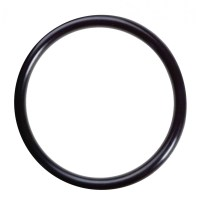 Omnipure H-118 Q-Series O-Ring