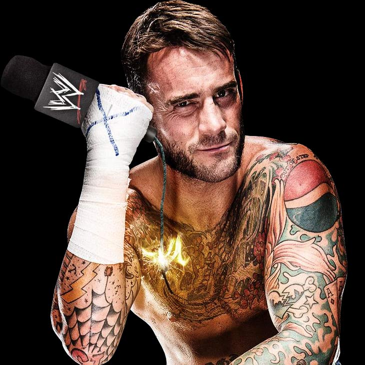Former WWE Superstar CM Punk Moves From Reel To Real