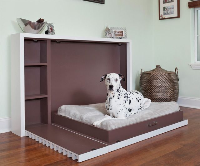 Murphy Bed for Dogs