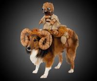 Star Wars Bantha Dog Costume | DudeIWantThat.com
