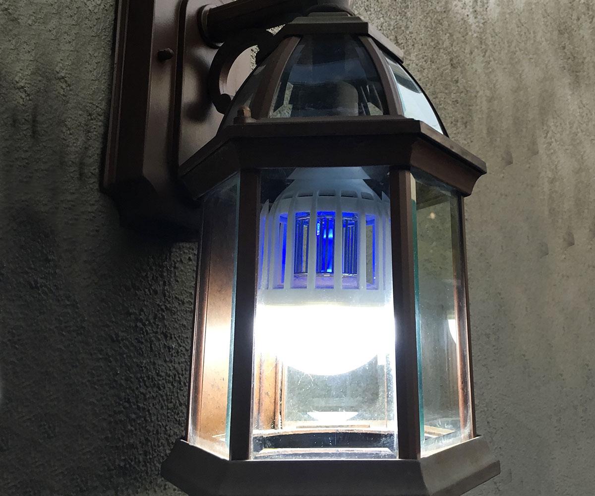 Zapplight Bulb  Bug Zapper  DudeIWantThatcom