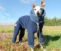 Dog Snowsuit   DudeIWantThat.com