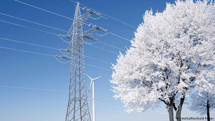 Засніжені дерева й лінії електромереж (символічне фото)