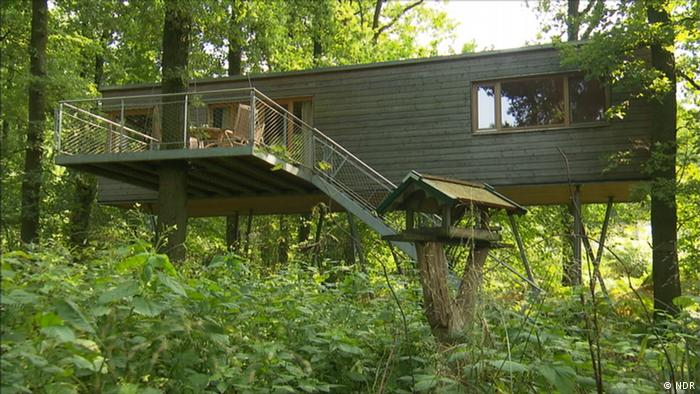A treetop holiday home