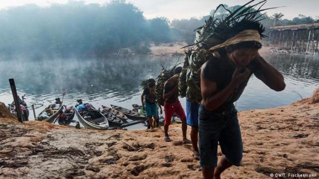 Los pueblos indígenas y tribales participan en la gobernanza comunal de entre 320 y 380 millones de hectáreas de bosques en la región, que almacenan cerca de 34.000 millones de toneladas métricas de carbono. Madarejúwa Tenharim als Amazonien