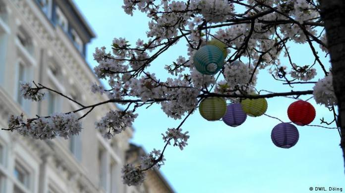 Waiting for the big cherry blossom in Bonn in March 2020 (DW / L. Döing)