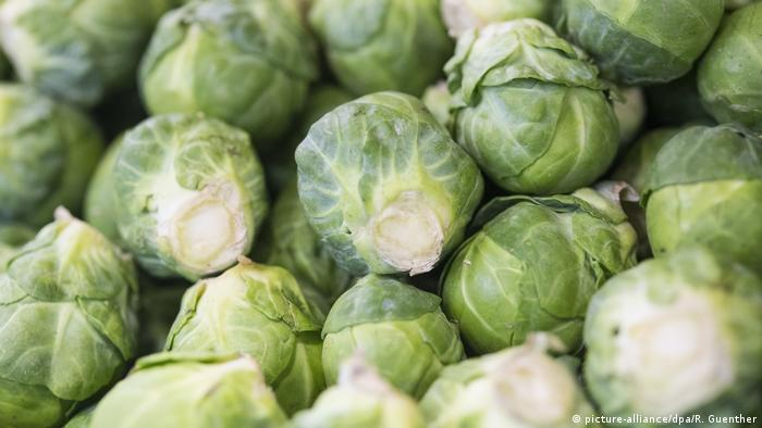 Brussels sprouts (picture-alliance / dpa / R. Guenther)