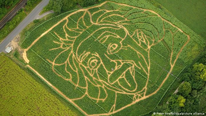 The outlines in the picture of Einstein on a corn field in Germany.