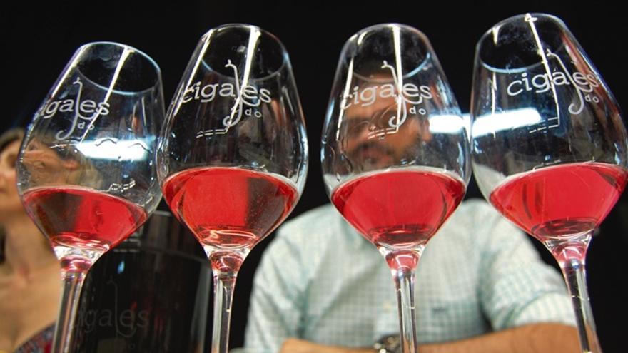 Diez vinos de la DO Cigales para disfrutar de un verano caluroso