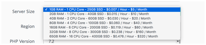 It was time to choose the $2.50 server size on Vultr from Forge's options