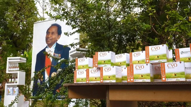 COVID-organics: Madagascar launches Africa's first cure for virus ...
